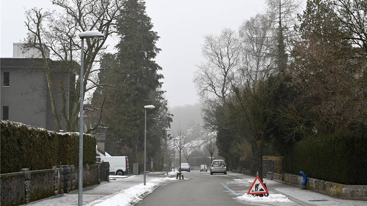 Bäume in Privatgärten: Mit dieser Idee ist die Stadt beim Projekt «Anpassungen an den Klimawandel» durchgefallen.