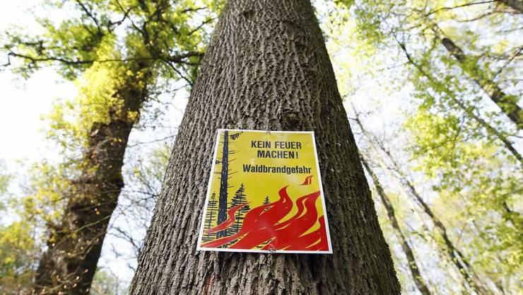 Die Waldbrandgefahr ist gross im Baselland. Es besteht die zweithöchste Gefahrenstufe 4.
