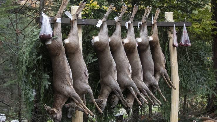 In Zukunft verblasen in Seltisberg die «Buechhalden»-Jäger erlegte Rehe.