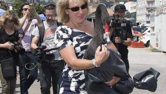 """Die Freilassung des schwarzen Schwans namens """"Nelson"""" durch die Waadtländer Staatsrätin Jacqueline de Quattro (FDP) am Donnerstag sorgte für Kritik."""