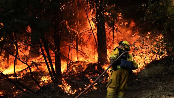 Ein Feuerwehrmann probiert, die Flammen zu bändigen.