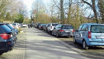 Ein Bild vom letzten Samstag: Wer auf dem Grünstreifen parkiert, riskiert eine Busse.