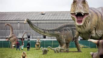 60 Dinosaurier-Modelle in Originalgrösse.
