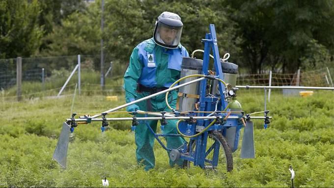 Seit den 70er-Jahren wird Chlorothalonil in der Landwirtschaft eingesetzt. (Symbolbild)