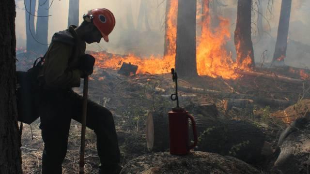 Jäger soll Feuer beim Yosemite-Nationalpark ausgelöst haben
