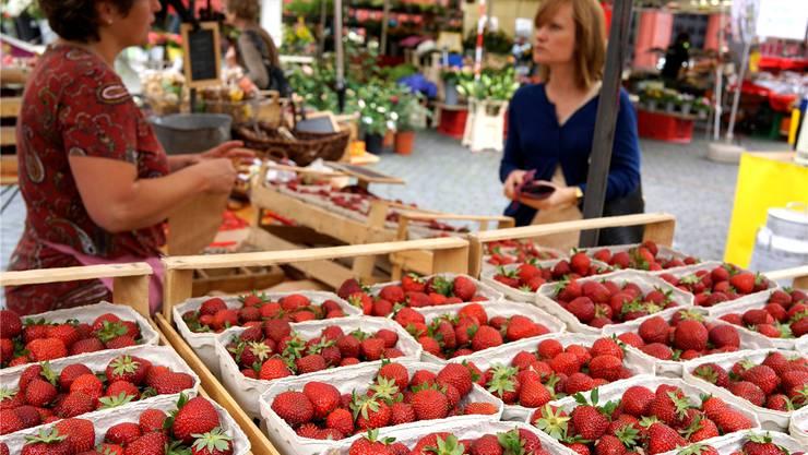 Begehrte Sommerfrüchte: Das Angebot an Erdbeeren aus der Region ist auf dem Basler Marktplatz gross. Kenneth Nars