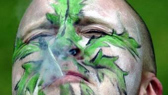 """""""Gras"""" gibt es in Uruguay bald in der Apotheke: Cannabis-Konsumenten müssen sich zuvor jedoch registrieren. (Archivbild)"""