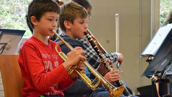 Wie viel soll die Musikschule kosten? (Symbolbild)