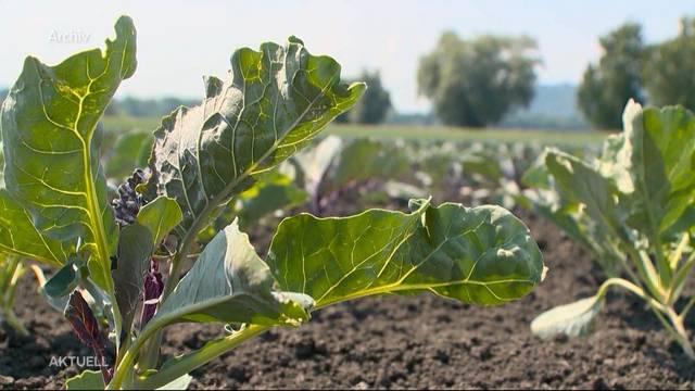 Drohende Flut neuer Landwirtschafts-Vorschriften verunsichert sogar Bio-Bauern