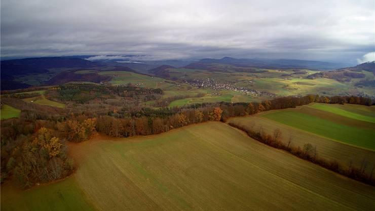 Blick vom geplanten Windparkgebiet Burg Richtung Oberhof.