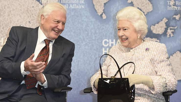 """Der Naturfilmer David Attenborough erhielt von der Queen den Chatham House Prize für die Serie """"Blue Planet II"""" über die Vermüllung der Ozeane."""