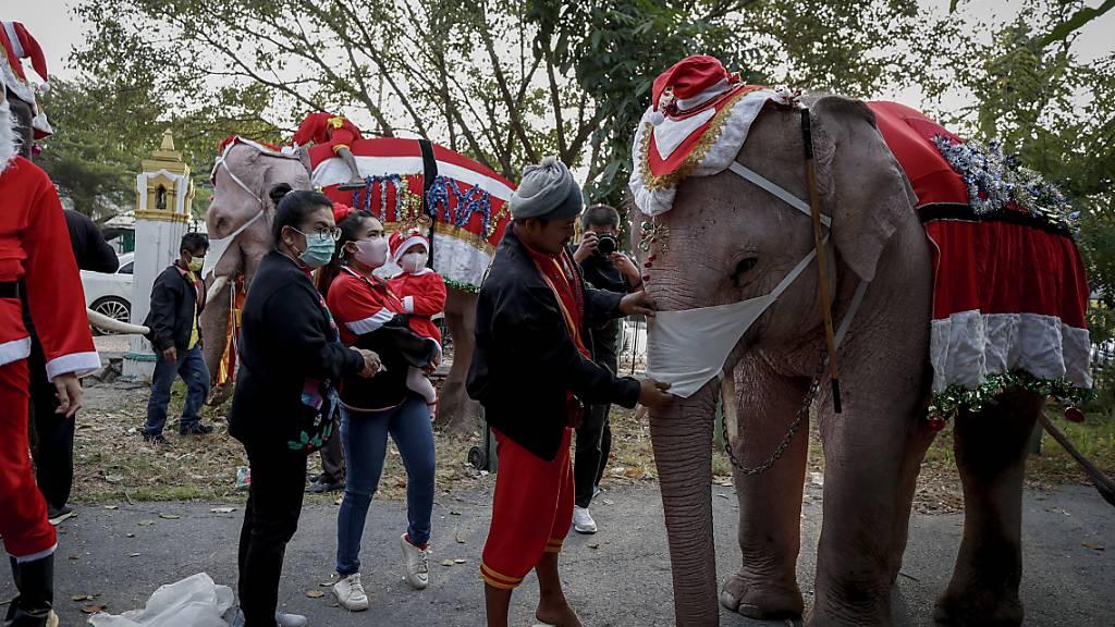 Schülerinnen und Schüler sind in Thailand von Elefanten besucht worden, die das Weihnachts-Kostüm trugen. Tierschützer kritisierten die Aktion.
