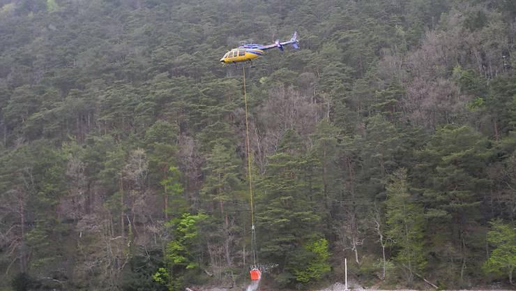 Ein Helikopter schöpft bei Gersau SZ Wasser aus dem Vierwaldstättersee, um einen in der Nacht ausgebrochenen Waldbrand zu löschen.