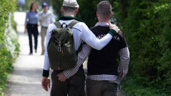 Ein homosexuelles Paar: Laut Forschern gehören zur HIV-Risikogruppe. (Symbolbild)