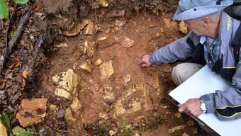 Der Badener Geologe André Lambert zeigt eine Stelle mit Muttergestein und ausgewaschener, rötlicher, bohnerzhaltiger Erde.
