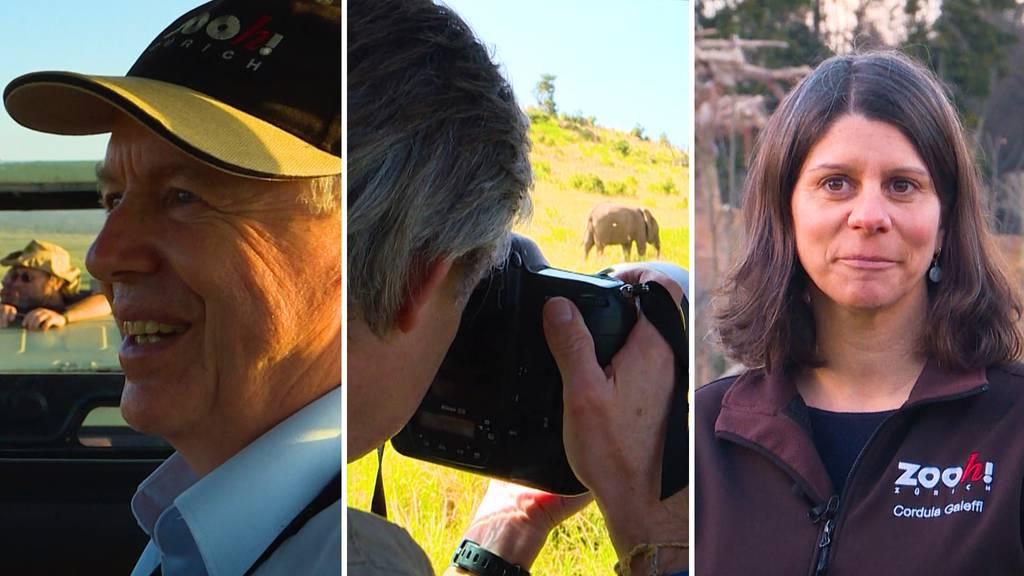 Lewa: Wildnis und Zoo