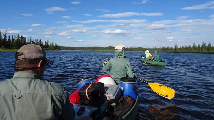 Um zu manövrieren, ist eine gute Koordination zwischen den Paddlern jedes Kanus gefragt. Klappts nicht, drohen Gepäck und Insassen im Wasser zu landen.
