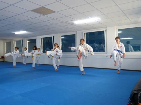 Mit Übungen im Stand wird an den Beintechniken gefeilt beim Wochenendlehrgang der Shinsei Kan Karateschule.