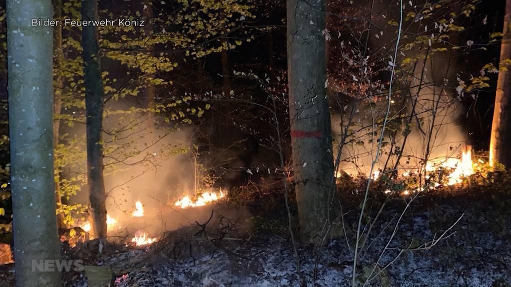 Waldbrandgefahr im Kanton Bern