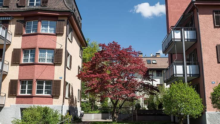 Die Baugenossenschaft Letten wurde 1922 gegründet und verfügt heute über mehr als 600 Wohnungen in der Stadt Zürich.