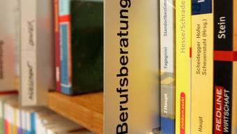 Die Kantone Aargau, Bern, Solothurn, Freiburg und Zürich veranstalten zum ersten Mal gemeinsam einen interkantonalen Lehrstellentag.