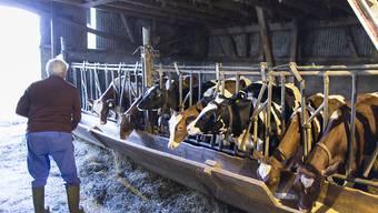 Auf vielen Bauernhöfen fehlt ein Nachfolger, der den Betrieb übernehmen will. (Symbolbild)