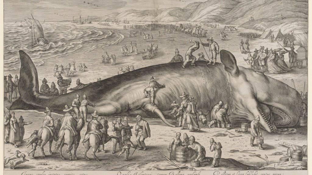 """""""Gestrandeter Wahl"""" (1598), Kupferstich von Hendrick Goltzius. Das Blatt wird im Kunstmuseum in der Ausstellung """"Bestechend gestochen"""" gezeigt."""