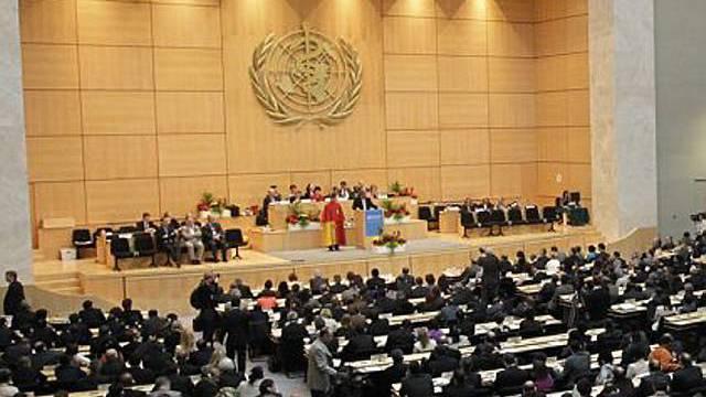 Die Milleniumsziele der WHO sollen bis 2015 umgesetzt werden