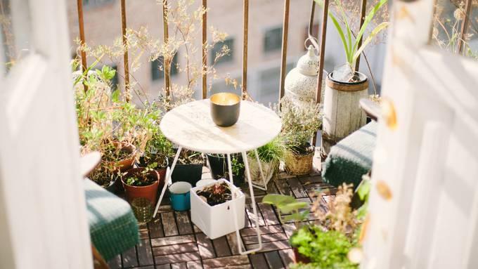 Wir verschönern euren Balkon