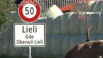 Ortstafel Oberwil-Lieli