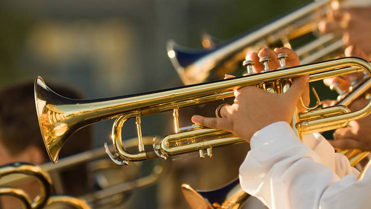 Die MG Möriken-Wildegg musiziert als Blasorchester in Harmoniebesetzung. Das heisst, nebst Blechinstrumenten ist der Verein auch mit Holz- und natürlich auch mit verschiedenen Rhythmusinstrumenten besetzt.
