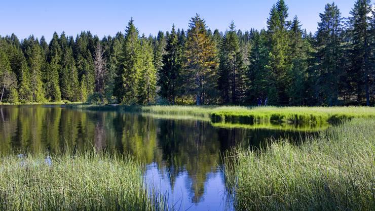Der Étang de la Gruère im Jura: Bei den Schutzgebieten liegt die Schweiz am Schluss der Rangliste in ganz Europa.