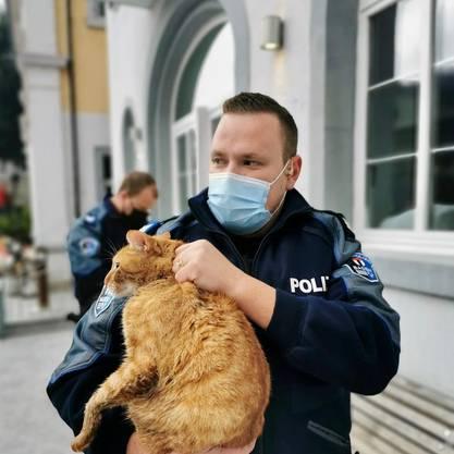 Gerettet: Ein Stadtpolizist mit dem Kater.