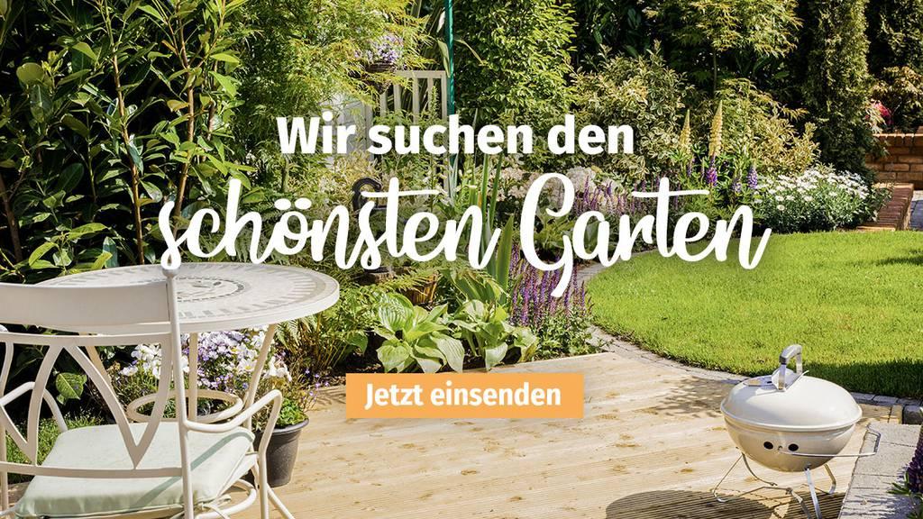 FM1Today sucht den schönsten Garten der Ostschweiz