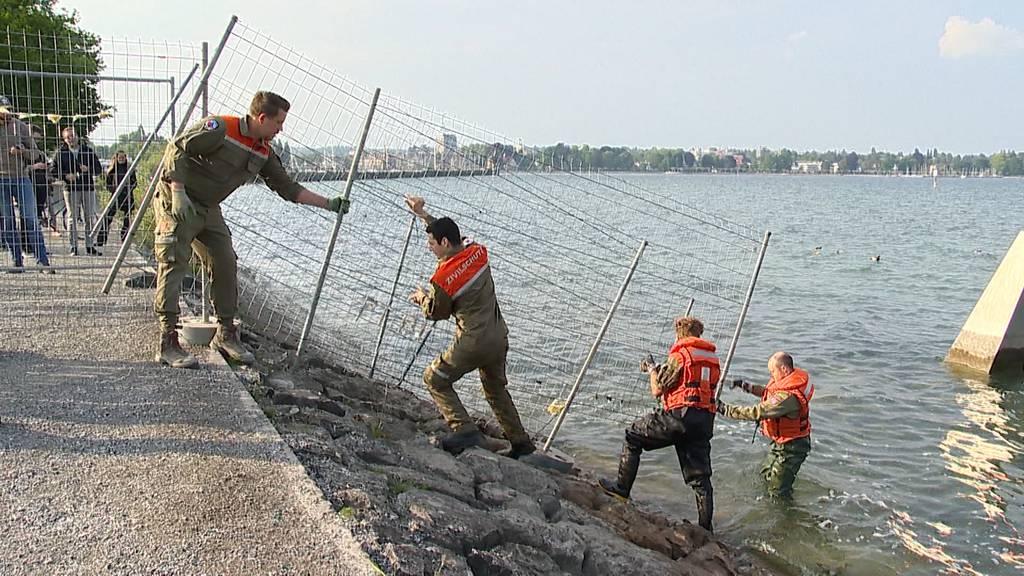 Grenzen wieder offen: Hier wird der Grenzzaun in Kreuzlingen abgebaut