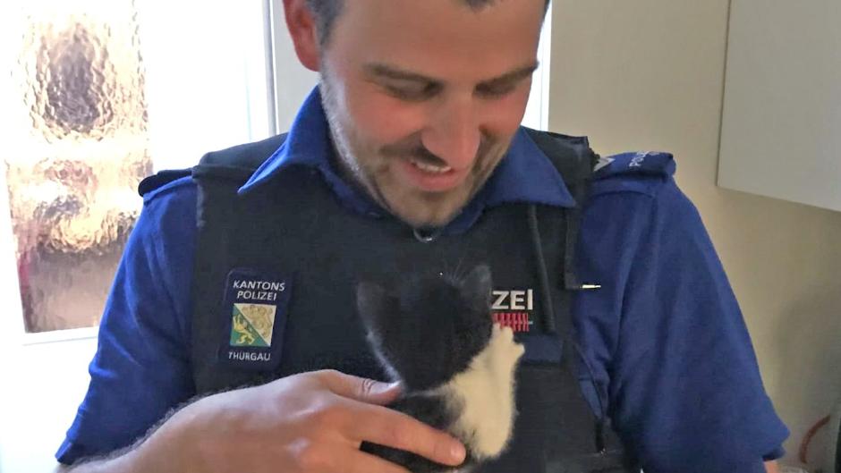 Rettungsaktion mit doppeltem Happy End: Katzenbaby gerettet, Polizist vergnügt.