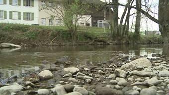 Auch im Aargau sind Bäche und Flüsse durch Pflanzenschutzmittel verunreinigt. Übeltäter seien die Bauern, wie eine Studie des Bundes zeigt.