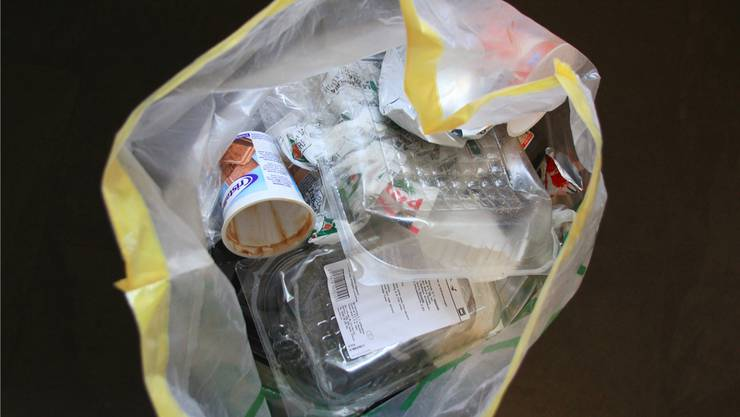 Pro Kopf und Jahr fallen rund 125 Kilogramm Kunststoff-Abfall an.