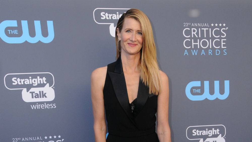Laura Dern: Traumrolle in «Marriage Story»