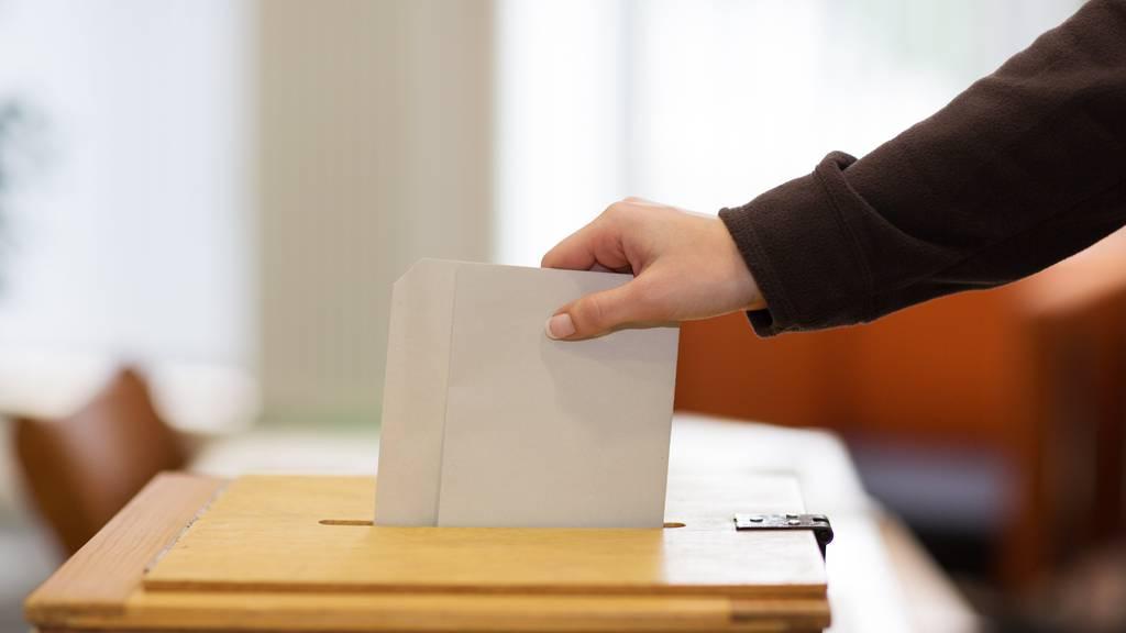 Der Mausklick soll den Abstimmungszettel in Zukunft ersetzen.