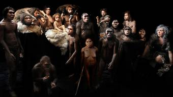Dank moderner Methoden dem Urmenschen auf der Spur: Wissenschafter glauben, dass der Frühmensch aus Europa und nicht wie angenommen aus Afrika stammt.