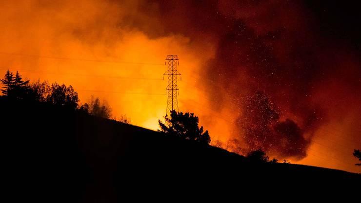 Schwere Waldbrände in Neuseeland haben hunderte Einwohner der Stadt Christchurch zur Flucht gezwungen.