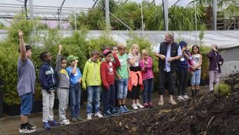 Im Rahmen der Aktion «Schule in der Gärtnerei» besuchten 18 Schüler die Gärtnerei Sonderegger in Langendorf.
