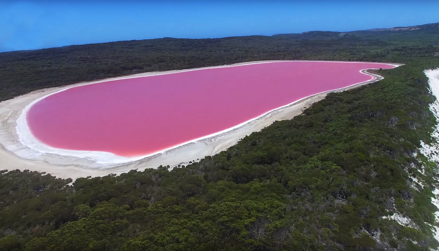 2017-10-04 08_42_51-Pink _Lake Hillier_, Middle Island with Esperance Island Cruises - YouTube