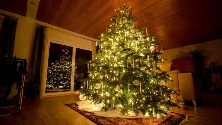 Der Weihnachtsbaum Werner Hegi aus Sarmenstorf