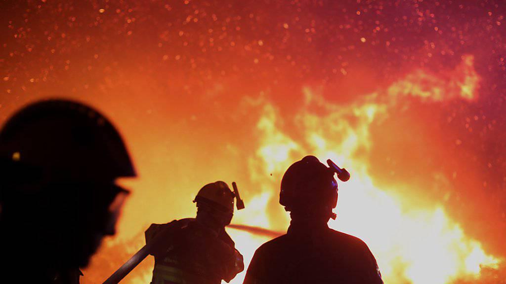 Die Feuerwehr auf Korsika ist seit Wochen im Einsatz gegen Waldbrände (Archiv)
