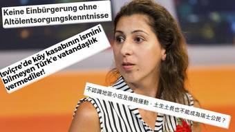 Die Schlagzeilen über den Fall Yilmaz