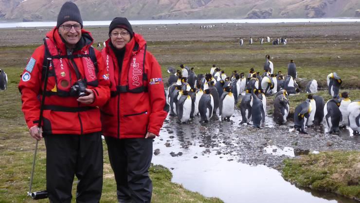 Rolf und Ruth Humbel während ihrer Antarktis-Expedition. Im Hintergrund zu sehen sind Pinguine, die Rolf Humbel mit seinem speziellen, bodennahen Stativ gefilmt und fotografiert hat.