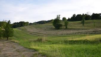 Das Hanggebiet «Rai» in Bergdietikon wurde an der Gemeindeversammlung in eine Wohnzone überführt.