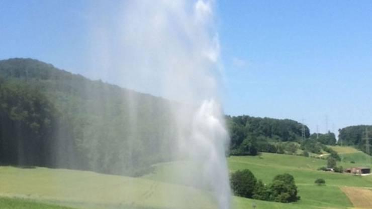 Für den Austritt von Solewasser auf einem stillgelegten Bohrloch in Muttenz BL trifft die Schweizer Salinen AG keine Schuld. Das Strafverfahren wurde eingestellt. (Archiv)